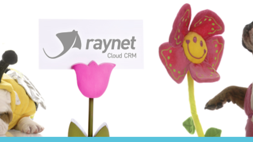 Spring RAYNET CRM upgrades